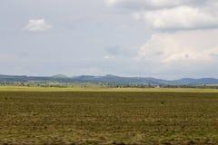 Windmill power plant Stock Photo