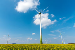 Windmill-powered plant and rapeseed field Royalty Free Stock Photography