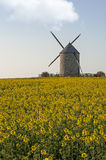 Windmill and rapeseed Royalty Free Stock Images