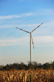 Windmill for renewable electric energy production  Royalty Free Stock Photo
