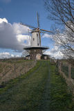 Windmill in rural road. Traditional Dutch landscape on a rural road Royalty Free Stock Images
