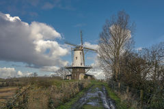 Windmill in rural road. Traditional Dutch landscape on a rural road Stock Photos