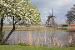 Windmill in springtime in the Netherlands Royalty Free Stock Photos