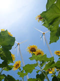 Windmill and sunflowers Stock Photography