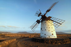 Windmill in sunrise Stock Image