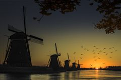 Windmill sunrise silhouette. Flying geese at the twight light sunrise on the Unesco heritage windmill silhouette at the middle of the canal, Alblasserdam Royalty Free Stock Image