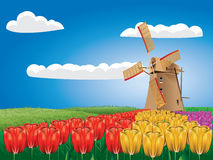 Windmill and tulips Stock Photography