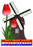 Windmill and tulp isolated Stock Image