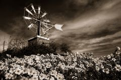 Windmill under dramatic sky. Duo tone photograph of a spanish windmill and field with flowers Stock Images