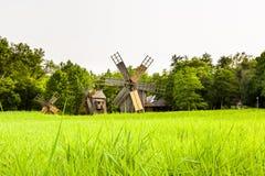 Windmill, Village Museum, Sibiu Royalty Free Stock Images