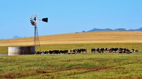 Windmill water pump Stock Photography