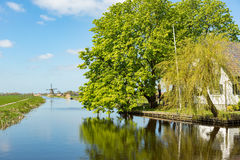 Windmill on the water in Rijpwetering. Royalty Free Stock Photography