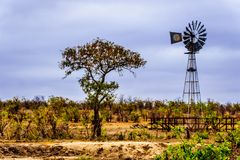 Windmill at a watering hole in the drought stricken northern part of Kruger National Park. In South Africa stock images