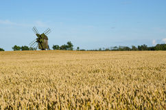 Windmill and wheat field. Old windmill in a wheat field Stock Photos