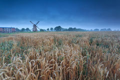 Windmill on wheat field in dusk Royalty Free Stock Image