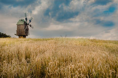 Windmill in a wheat field Royalty Free Stock Photo
