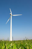 Windmill for wind energy in grass Stock Image