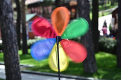 Windmill Wind Spinner. Colorful windmill wind spinner in the park Royalty Free Stock Images