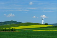 Windmill on a yellow-green field. Windmill over rape field in bloom Royalty Free Stock Images