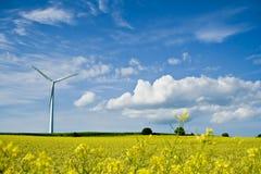 Windmill01 Images libres de droits