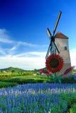 Windmillen försilvrar in laken Royaltyfria Foton