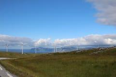 Windmillpark in Måløy, Norwegen Stockbilder
