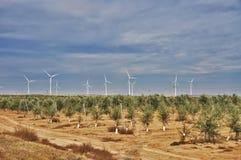 windmills Fotografie Stock