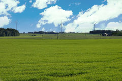 Windmills. Green grass, blue sky and windmills Royalty Free Stock Image