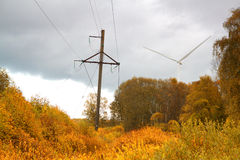 Windmills in the autumn landscape Stock Image