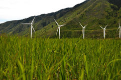 Windmills with Blowing Grass Stock Photo
