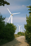 Windmills generators beside of country road Royalty Free Stock Photo