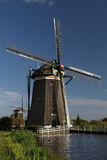Windmills on dutch countryside Royalty Free Stock Photo