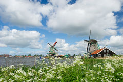 Windmills at Dutch Zaanse Schans Royalty Free Stock Image