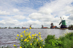 Windmills at Dutch Zaanse Schans Royalty Free Stock Photography