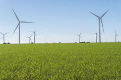 Windmills for electric power production, eco power, wind turbine Royalty Free Stock Photo
