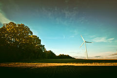 Windmills on the field. Stock Photography