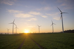 Windmills on a  field Stock Images