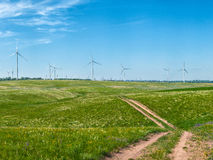 Windmills on field Stock Photos