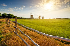 Windmills on field at sunset Royalty Free Stock Photos
