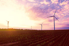 Windmills on the field at sunset in summer. Royalty Free Stock Photography