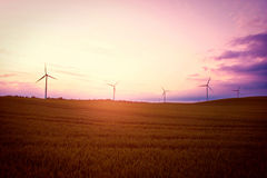 Windmills on the field at sunset in summer. Royalty Free Stock Image