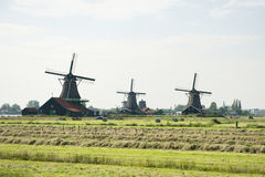 Windmills and the field at Zaanse Schans, Holland Stock Images