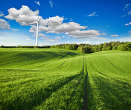 Windmills and green field Royalty Free Stock Image