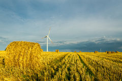 Windmills at harvest time Stock Photo