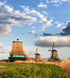 Windmills in Holland Royalty Free Stock Photo