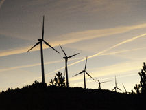 Free Windmills In The Field Stock Photos - 93619123