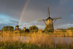 Windmills in Kinderdijk Royalty Free Stock Images