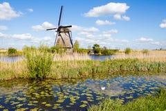 Windmills in Kinderdijk, Holland. A water channel and historical windmills in Kinderdijk, Holland royalty free stock image