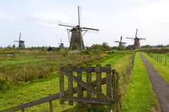Windmills, Kinderdijk, Netherland Royalty Free Stock Photography