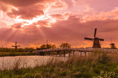 Windmills in Kinderdijk - Netherlands. Architecture background Royalty Free Stock Images